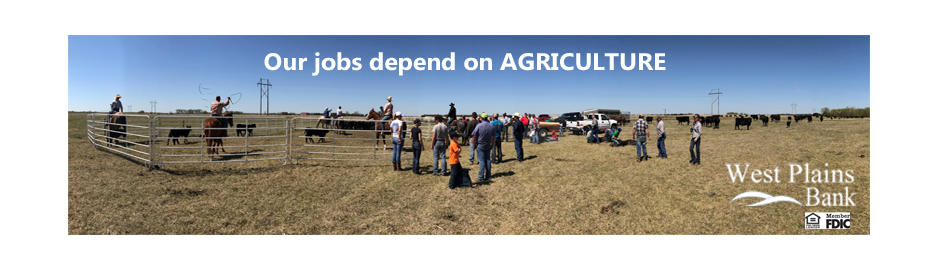 jobs depend on AG